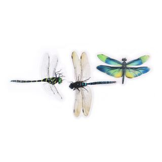 30 colorful dragonfly stickers